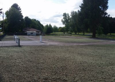 Eco GreenGrid Use - live grass driveway in progress